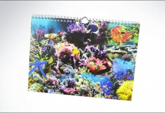 kalenderbindung - riesen printmedia - adliswil - ausrüsten