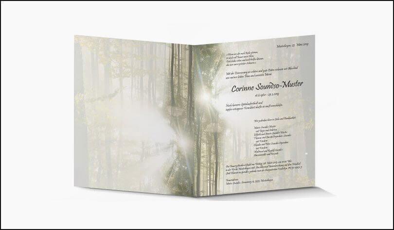 Traueranzeigen Lebenslicht - Riesen Printmedia - Adliswil - Zürich - Grafik - Sujets - Design - Wollishofen - Thalwil - Kilchberg