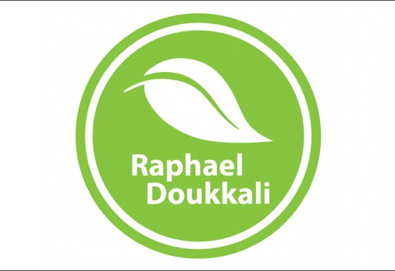 raphael-doukkali-logo-design-fitness-riesen printmedia